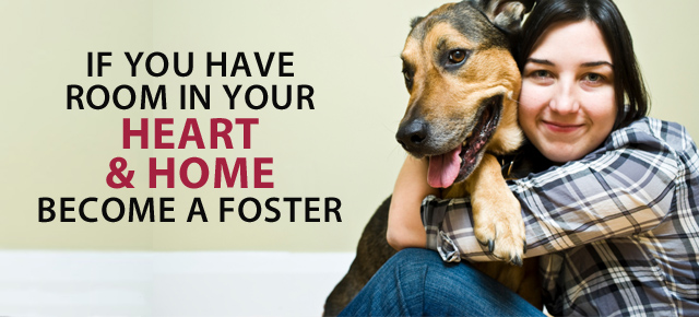 Foster a Pet ~ Save a Life! - Partnering for Pets