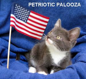 petriotic palooza